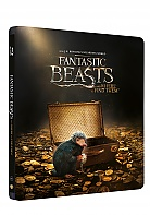 Fantastic Beasts and Where to Find Them 3D + 2D Steelbook™ Limited Collector's Edition + Gift Steelbook's™ foil (Blu-ray 3D + Blu-ray)