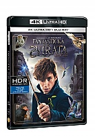 Fantastic Beasts and Where to Find Them 4K Ultra HD (2 Blu-ray)