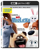 The Secret Life of Pets (4K Ultra HD + Blu-ray)