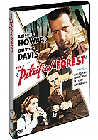 The Petrified Forest (DVD)