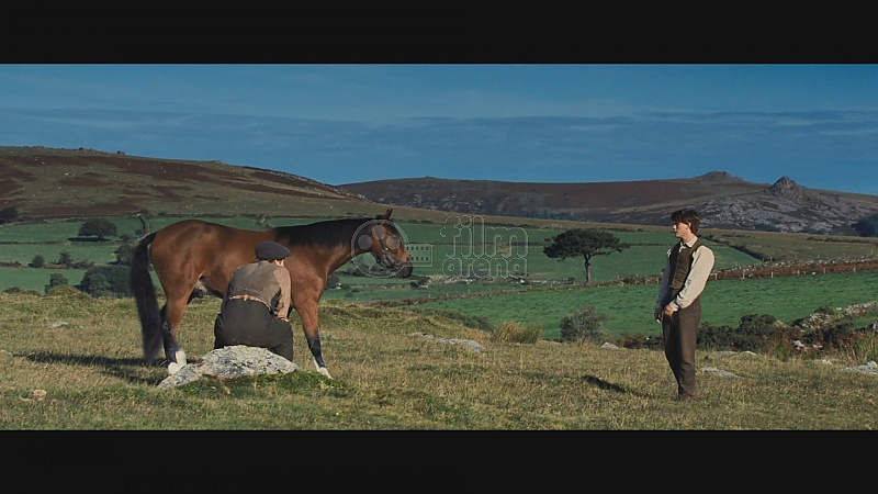 eavan boland war horse War horse is the story of joey, a young horse separated from the boy he loves and drafted into world war i it's a familiar story given a new twist it's a familiar story given a new twist here's the formula: all quiet on the western front + my little pony = war horse.